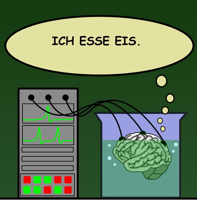 Gehirn im Bottich